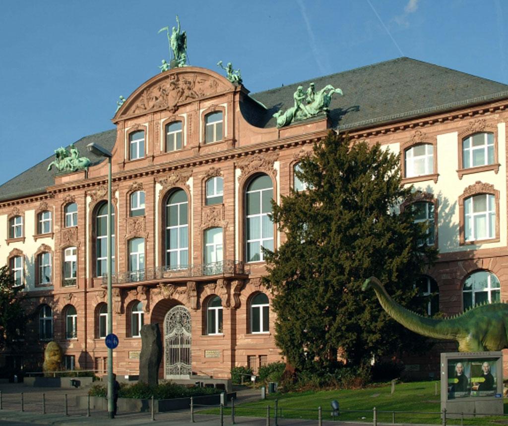 NEUGESTALTUNG SENCKENBERG, FRANKFURT AM MAIN